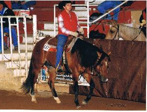 Western pleasure judging card
